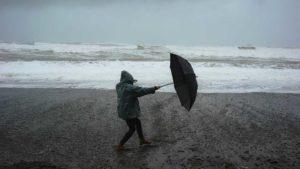 Bagagiste et cie : un parapluie pour l'automne